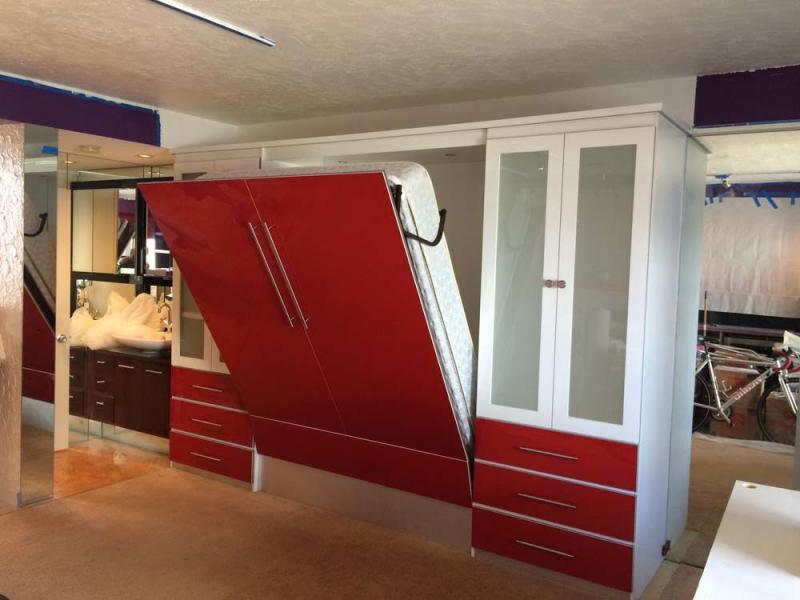 Modern Contemporary Murphy Bed
