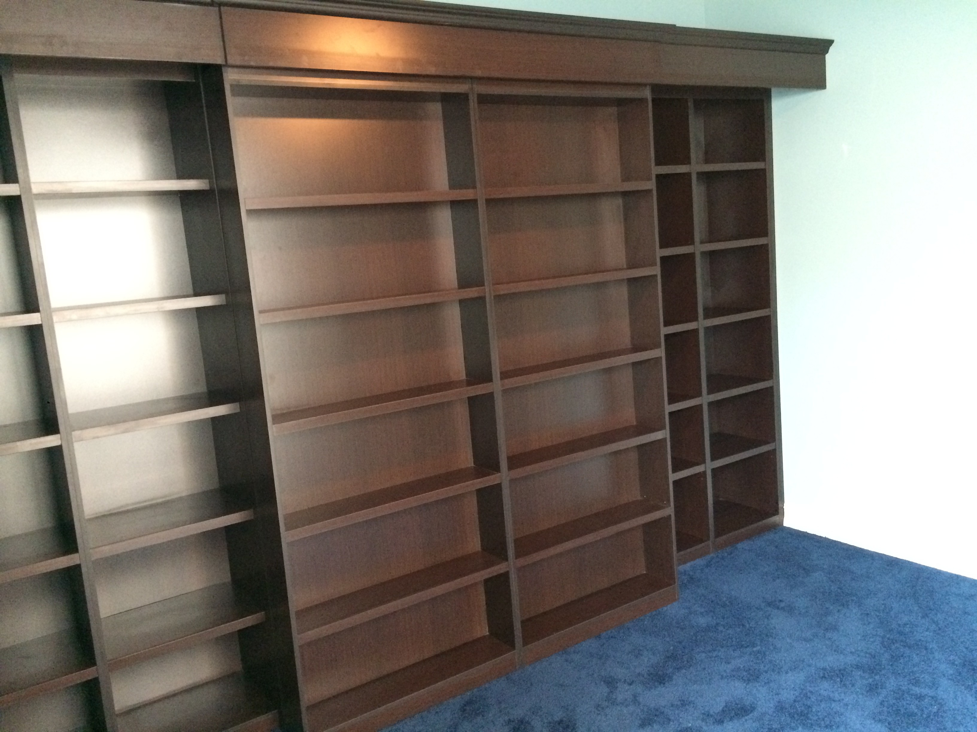 Library Murphy Bed