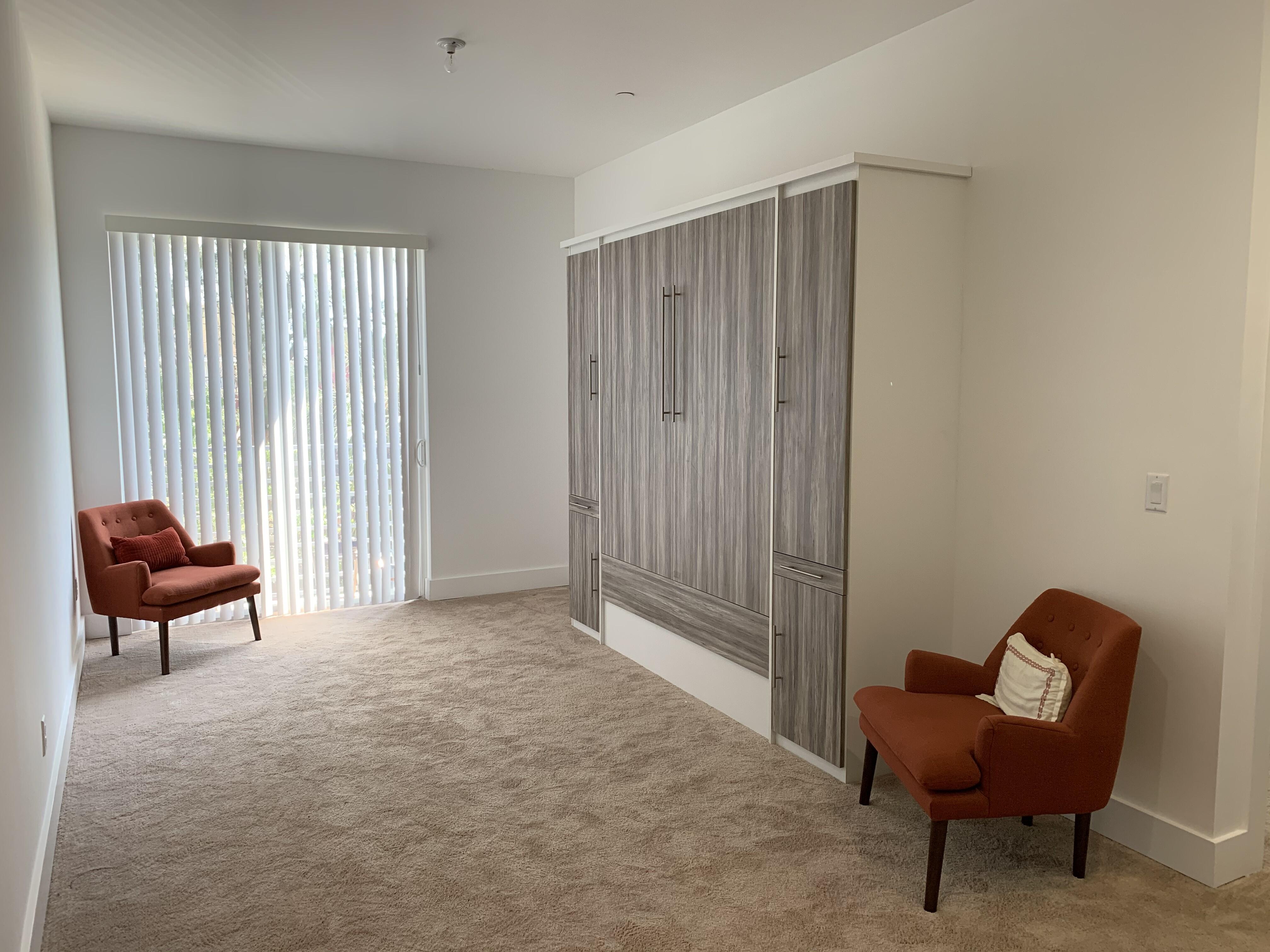 Modern Contemporary Murphy Bed